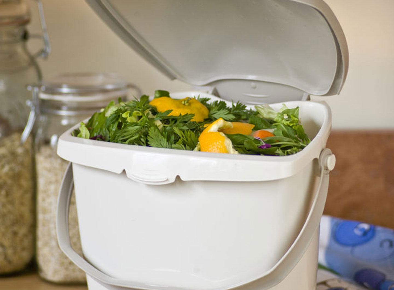 Food-Scrap Container SureClose